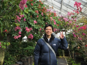 箱根強羅公園の熱帯植物園