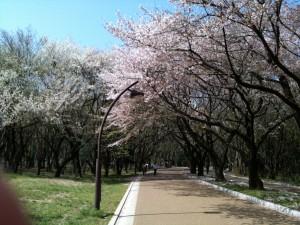 春は何かと不安定な季節