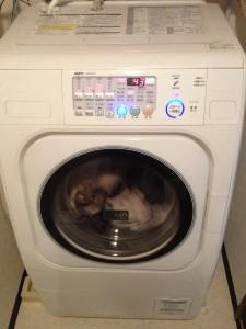 ドラム式洗濯機を引越しするにはいろいろ面倒なことがあります